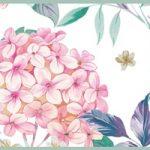 Cenefa decorativa floral |Flor grande pétalos rosas