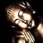 Fotomural Premium Buda Sepia