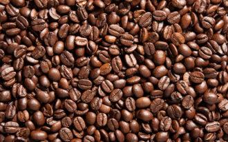 Fotomural Premium Café-Premium
