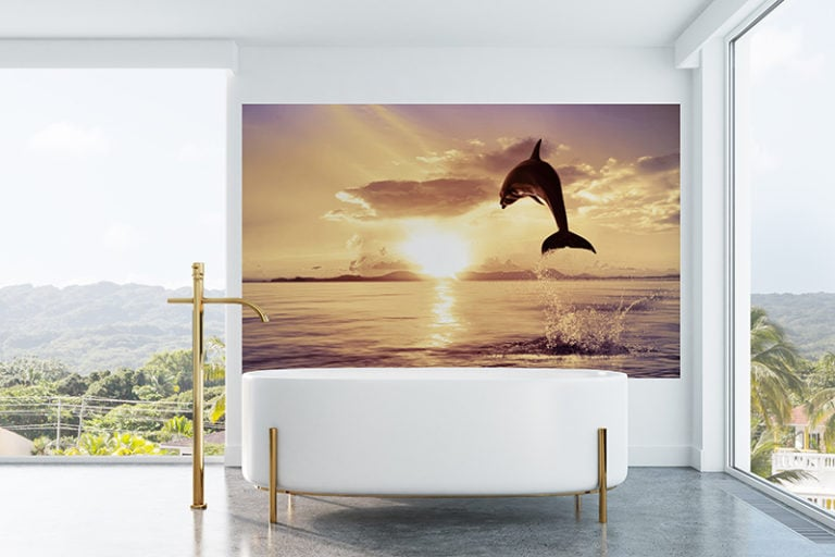 Fotomural Premium Delfín-Premium