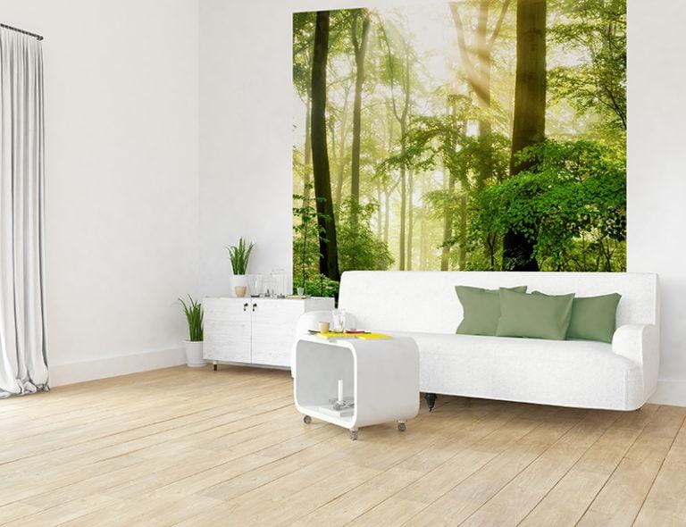 Fotomural Premium Haz de Luz-Premium