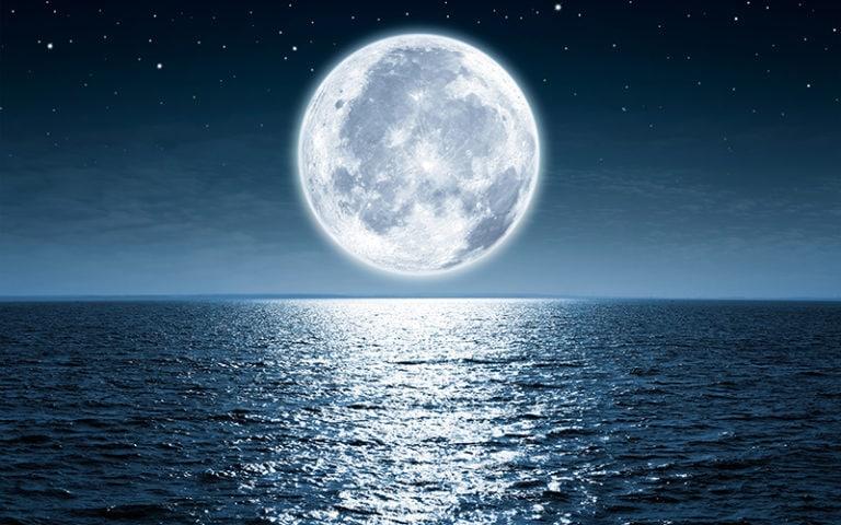 Fotomural Premium Luna-Premium