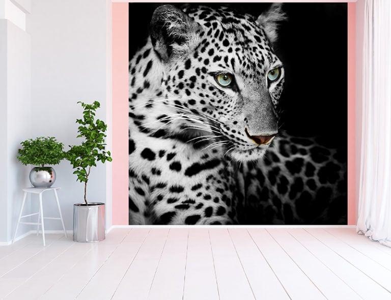 Fotomural Premium Tigre Blanco y Negro-Premium
