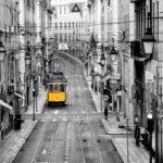 Fotomural Premium Tren