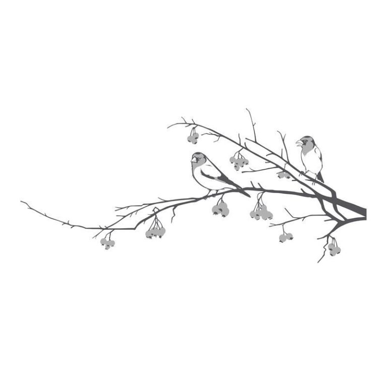 Ambadecor | Vinilos | Fotomurales | Vinilo floral Modelo 93-Vinilo monomérico autoadhesivo